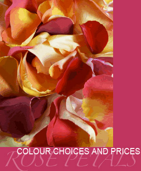 Colour-Choices-and-Prices
