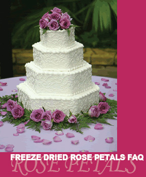 FAQ-Rose-Petal-Cake