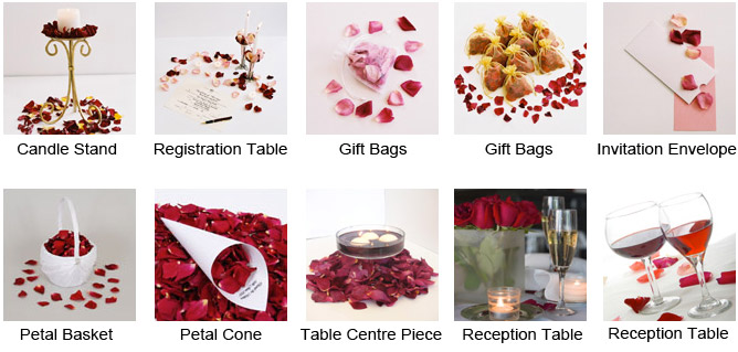 Ideas---Rose-Petals-2